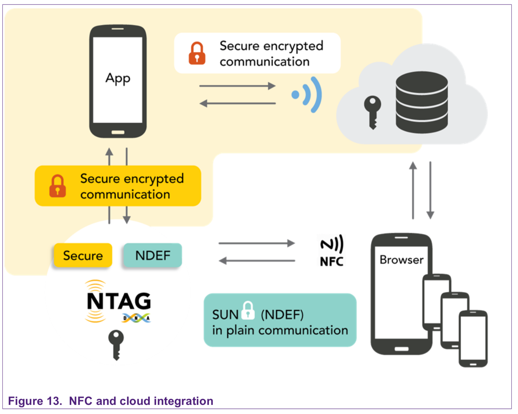 TAG NFC NTAG 424 DNA
